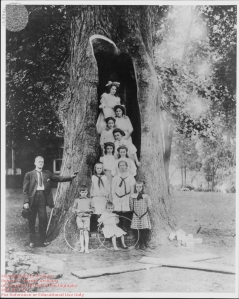Mayor Claude and children in Liberty Tree, MSA SC 1477-1-5592